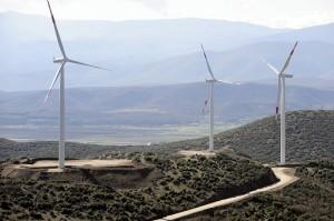 """Првата """" ветерна фарма"""" во Македонија Фото: Скриншот"""