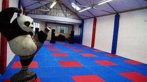 Изградбата на боречкиот центар требаше да почне пред две години        Фото: Принтскрин