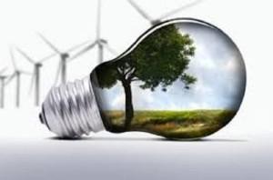 Информацијата како двигател на јавната свест за заштита на животната средина   Фото: Скриншот