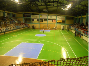 Вака некако требаше да изгледа спортската сала  во Карпош    Фото: Принтскрин спортска сала во Радовиш