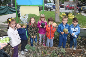 Децата  заедно со згрижувачко-воспитниот тим од градинките одгледуваат зелечук   Фото: Принтскрин (Општина Кисела Вода)