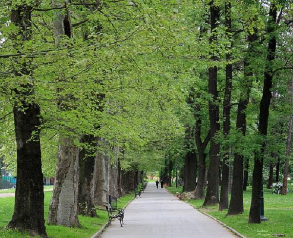 Градски парк Скопје, фото: Принтскрин