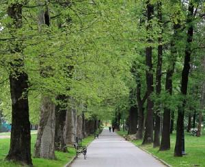 Parku i Qytetit, Shkup. Foto: printscreen.
