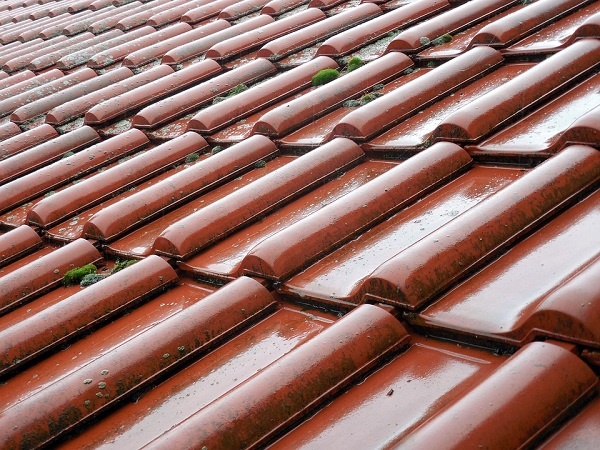 Shumë kopshte të Gjevgjelisë u bënë me çati të reja. Foto: Pixabay
