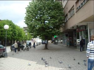 Максим Димитриевски со историски резултат во Куманово, Зоран Ѓорѓиевски изгуби по вторпат  Фото: commons.wikimedia.org