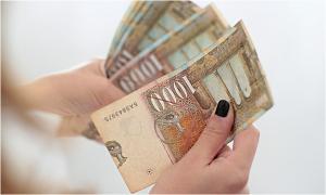 Основицата за пресметка на придонесите  се качува од 12 на 16 просечни бруто-плати, но не се укина.  Фото: Принтскрин