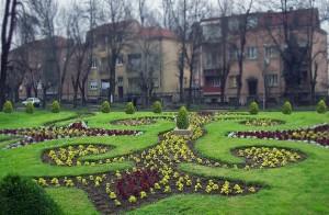 Построги мерки за поголемо зеленило. Фото: ЈП Комуналец, Битола